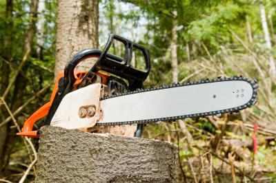 The Sizes of Chains on Stihl Chainsaws | Home Guides | SF Gate