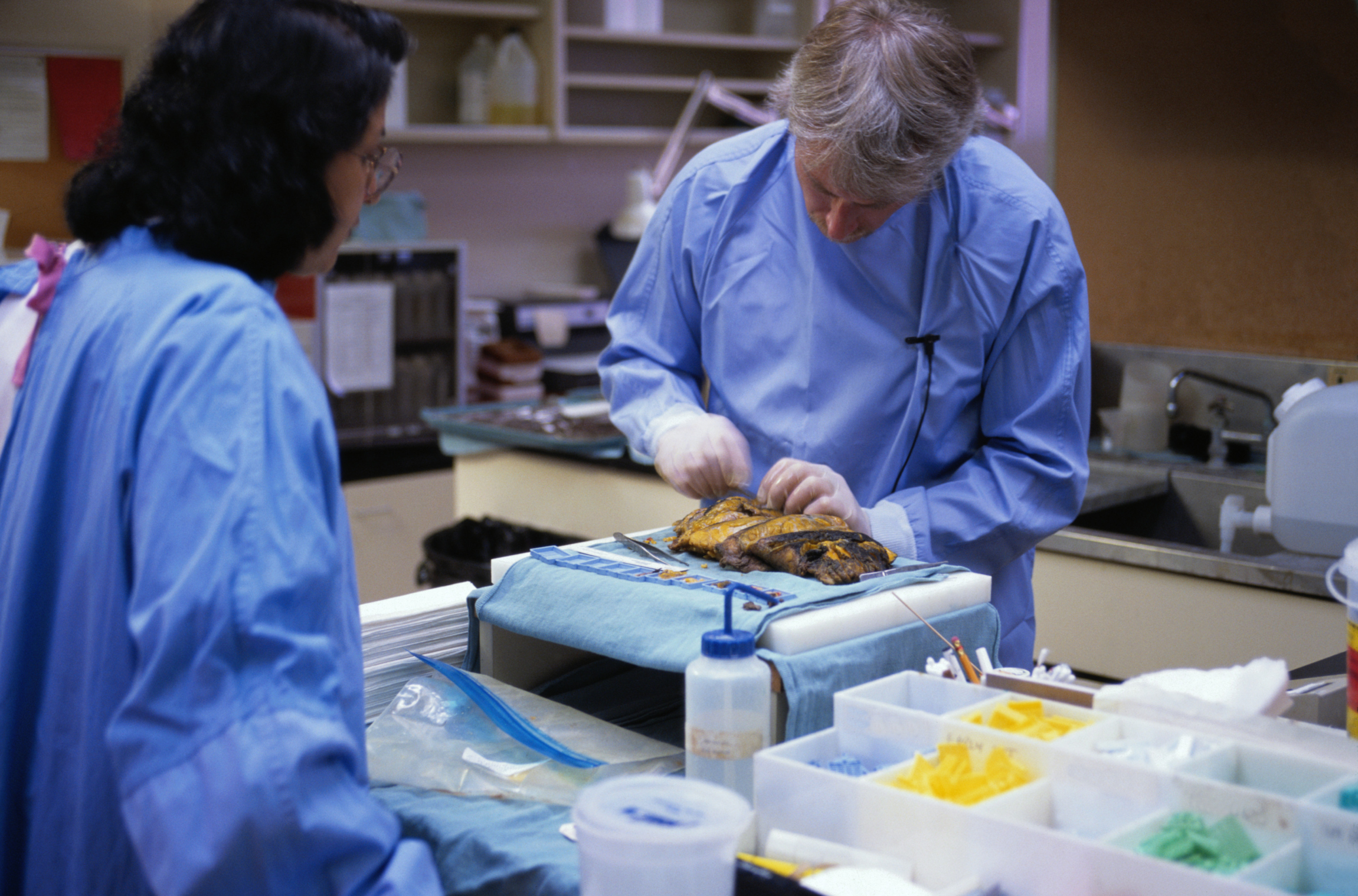 What Are The College Requirements For Becoming A Coroner Work Chron Com