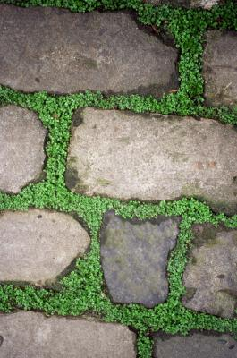How To Lay Flagstone In The Dirt With A Weed Barrier Home Guides