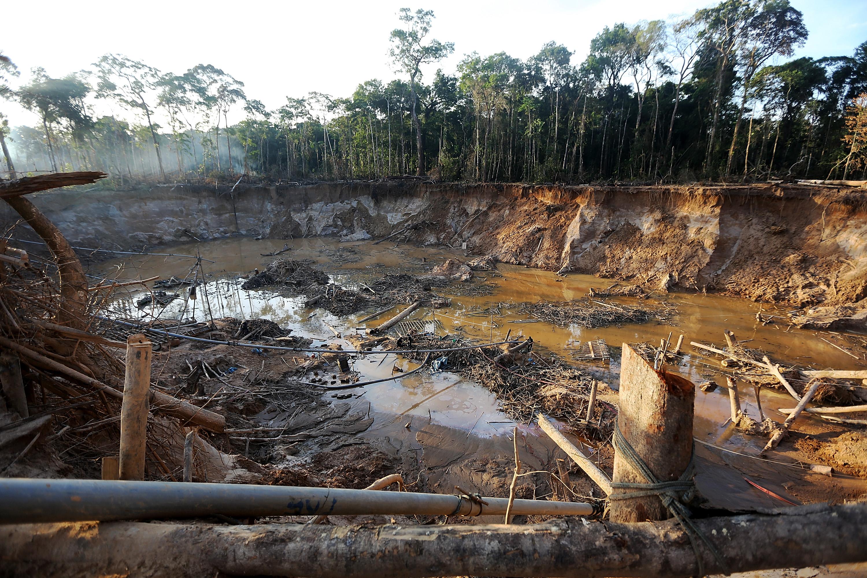 destruction of nature by humans