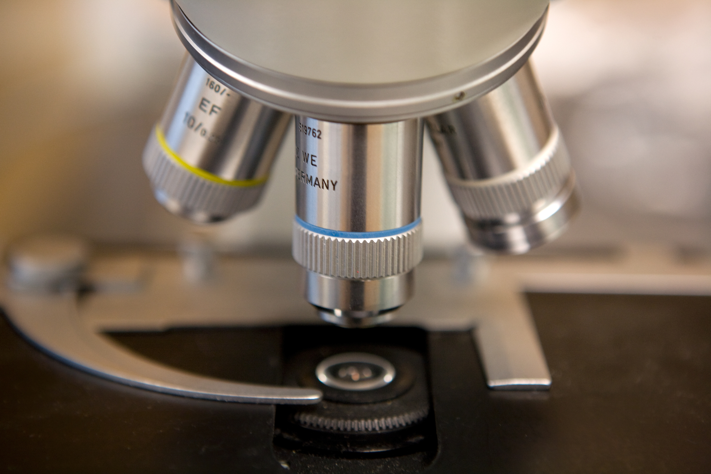 Different Kinds of Microscopes & Their Uses